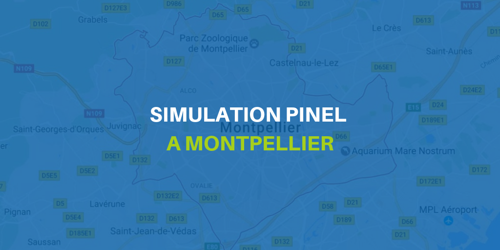 simulation-pinel